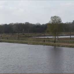 https://live.netcamviewer.nl/Webcam-Waterschap-Vechtstromen/854